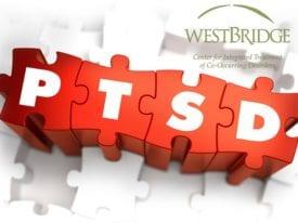 PTSD Awareness Red PTSD Puzzle.WBBlog7